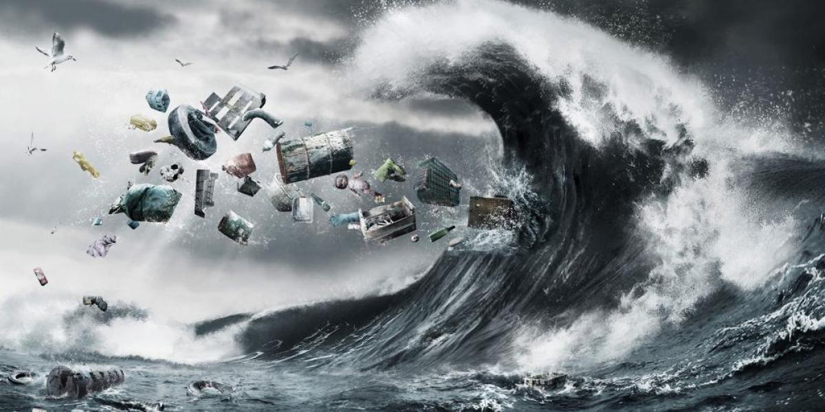 Activité Océan & Environnement